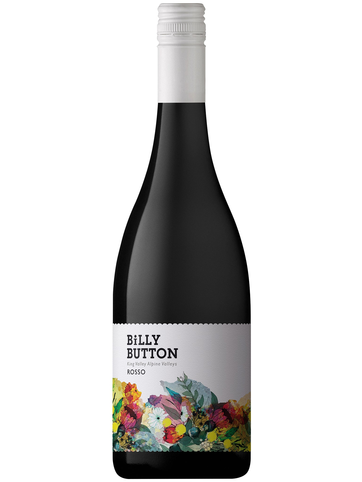 Billy Button Rosso 12pk 2019