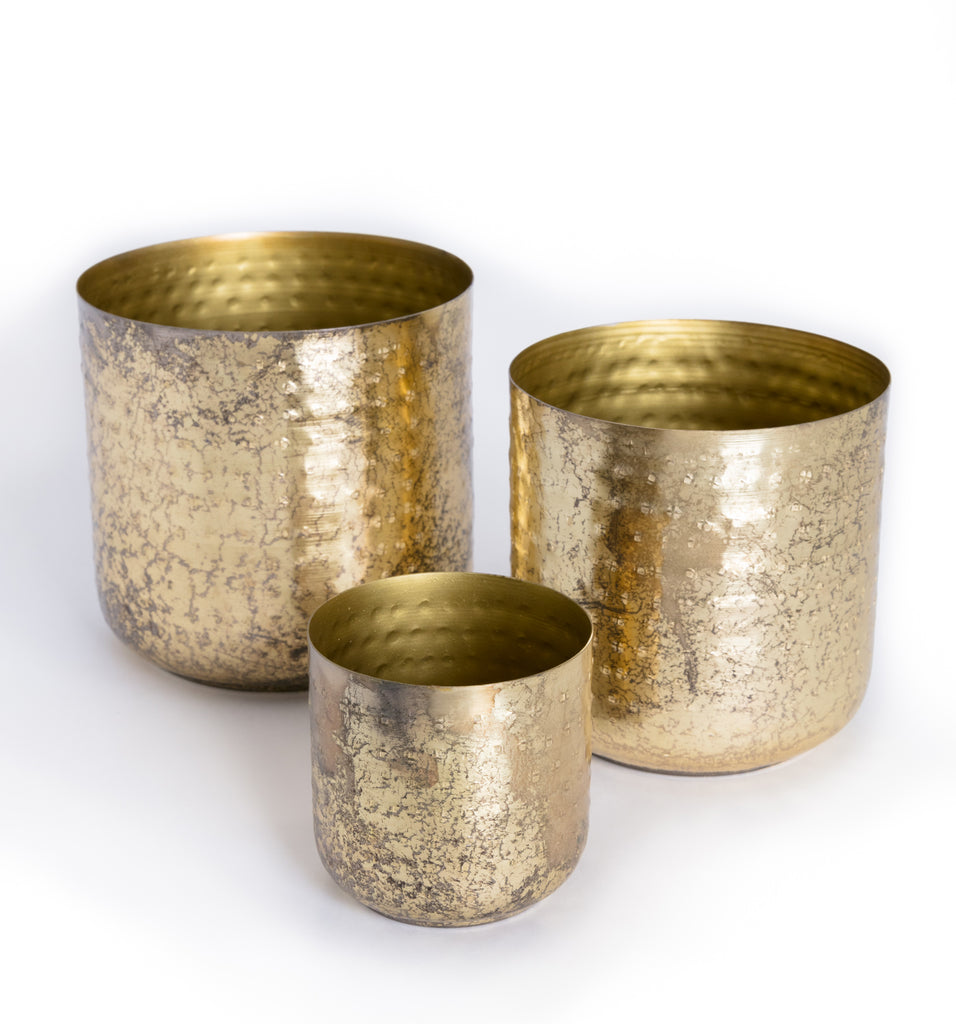 Gold Plant Holder (med)
