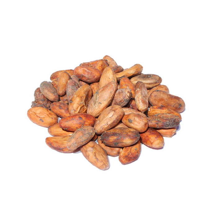 Organic Raw Ecuadorian Grown Cacao Beans
