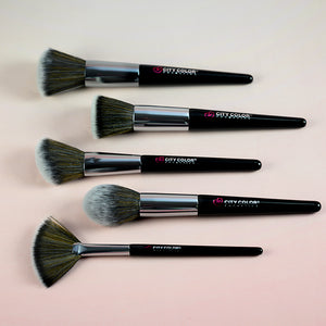 Pro Blend 5 Piece Brush Set