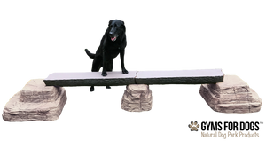 Ellie's Jump Balance Beam™  - Double Beam - dog park products