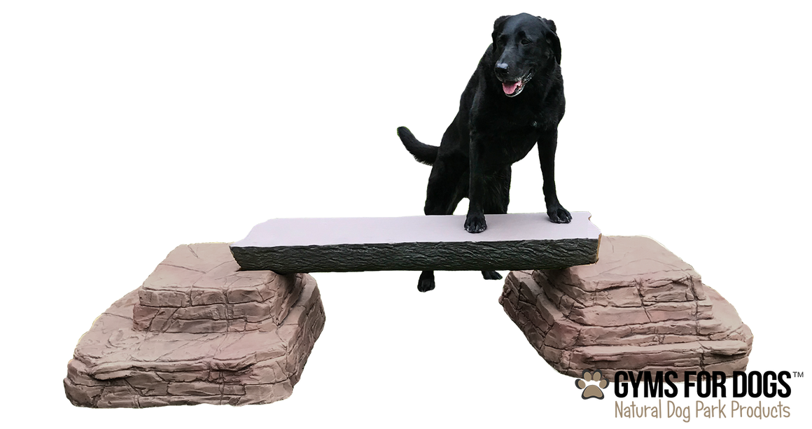 Ellie's Jump Balance Beam™ - Single Beam - dog park products