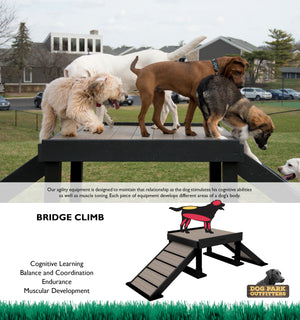 Bridge Climb (Small/Medium) - Poly Wood Grain - dog park products
