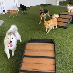 Play Series™ Mini Hill Climb - Poly Wood Grain - dog park products