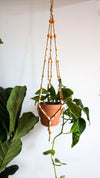 Orange Beaded Plant Hanger (X-Large)