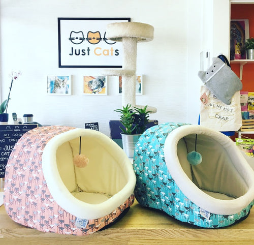 Cozy Pet Hooded Cat Bed with Toy