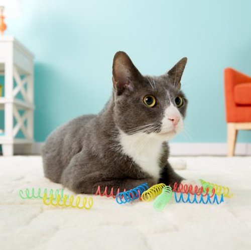 Ethical Pet Colorful Springs Cat Toy