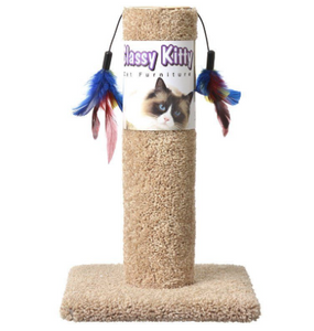 Urban Pet Scratch Post with Feathers