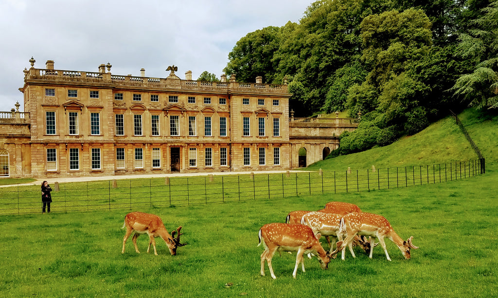Dyrham Park - A National Trust property