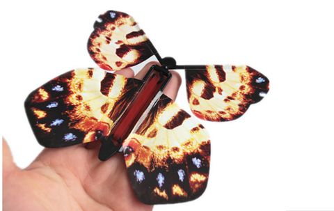 Magic Flying Butterfly Card
