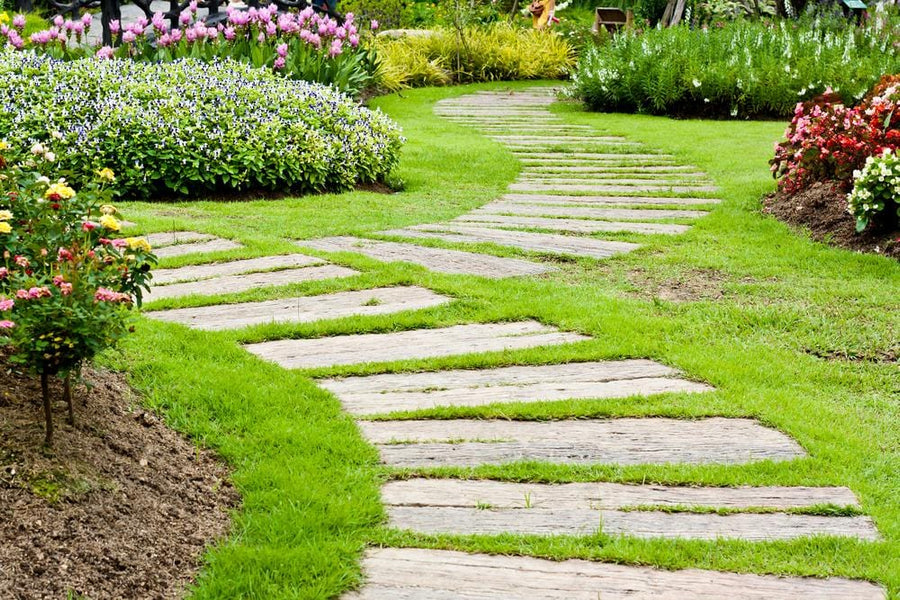 Grass Grown Through Stone Pavers