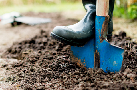 How to Push the Edger in the Ground to Scoop Out Soil