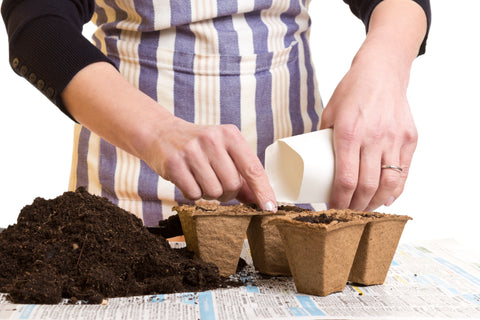 Preparing Biodegradable Bags for Planting