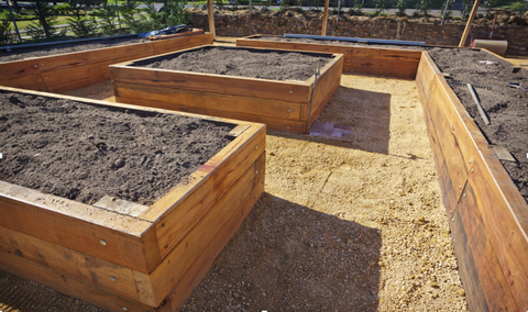 Raised Wooden Garden Beds with Soil