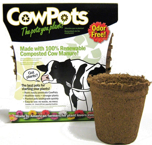 "Cowpots Lawn & Patio 12-Pack 3"" Round Cowpot"