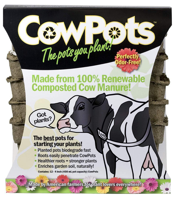 "Cowpots Lawn & Patio 12-Pack 4"" Square Cowpot"