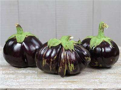Green Valley Supply Seeds Aswad Eggplant (25 seeds)