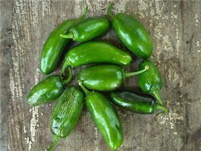 Green Valley Supply Lawn & Patio Craig's Grande Jalapeno Pepper Seeds in 1 Oz Glass Jar