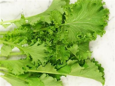 Green Valley Supply Lawn & Patio Mustard Greens Southern Giant Curled