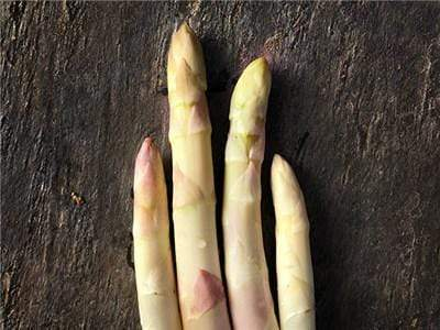 Green Valley Supply Seeds Precoce D'Argenteuil Asparagus (75 seeds)