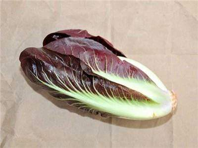 Green Valley Supply Seeds Rossa Di Treviso Radicchio (250 seeds)