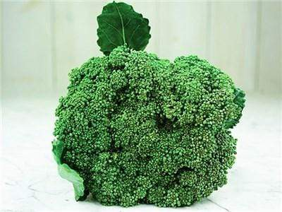 Green Valley Supply Seeds Waltham 29 Broccoli (300 seeds)
