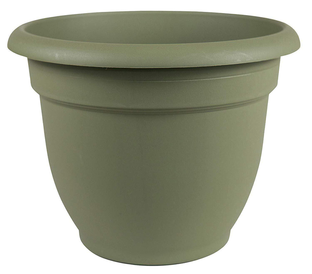 Bloem Lawn & Patio Thyme Green Ariana Self-Watering Planter 6""