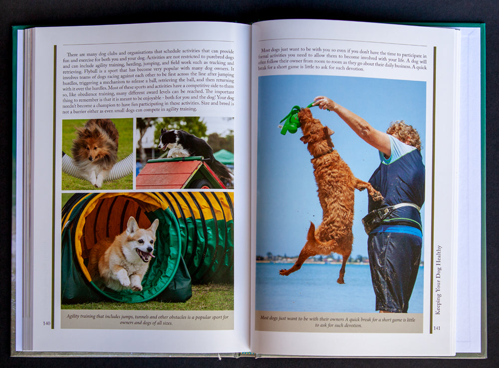 Double page spread from Getting to Know Dogs