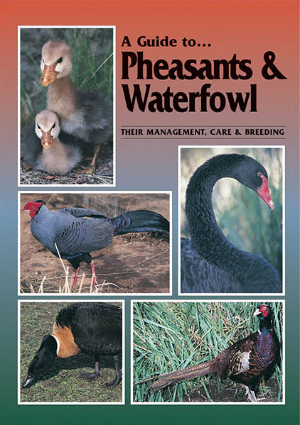 Pheasant and Waterfowl Guide