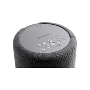 Audio Pro A10 Wireless Multiroom Speaker