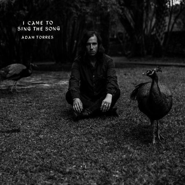 Adam Torres – I Came To Sing the Song