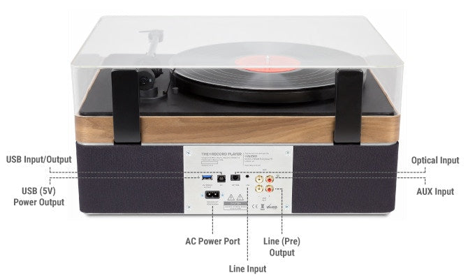The+Record Player Special Edition in Maple From PLUS AUDIO - Rear Panel