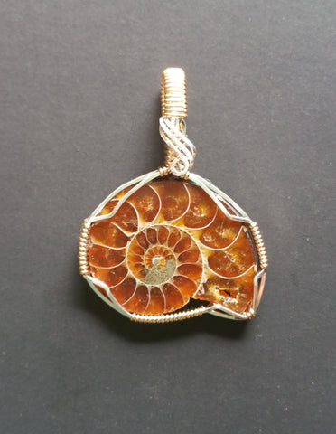 Ammonite Wire Wrapped