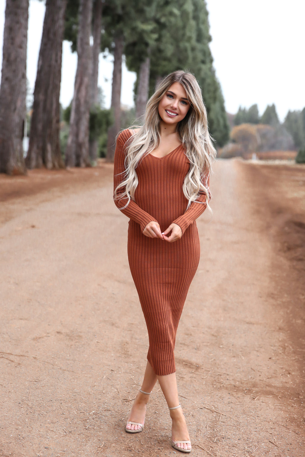 Bodycon Rust Dress - llacie