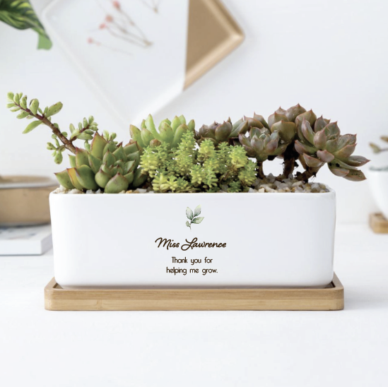 Ceramic Planter Rectangle (custom)