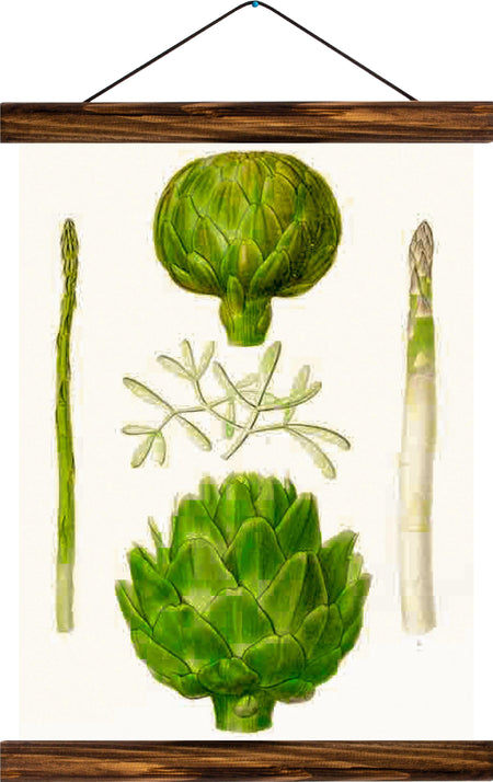 Asparagus and artichoke, reprint on linen - Josef und Josefine