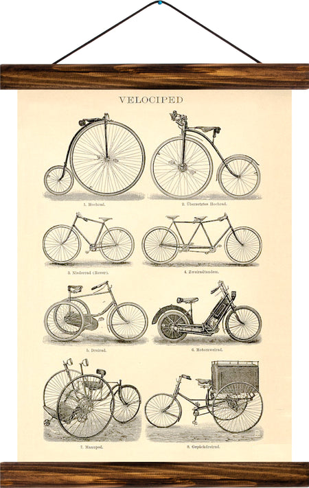 Velocipede, reprint on linen - Josef und Josefine