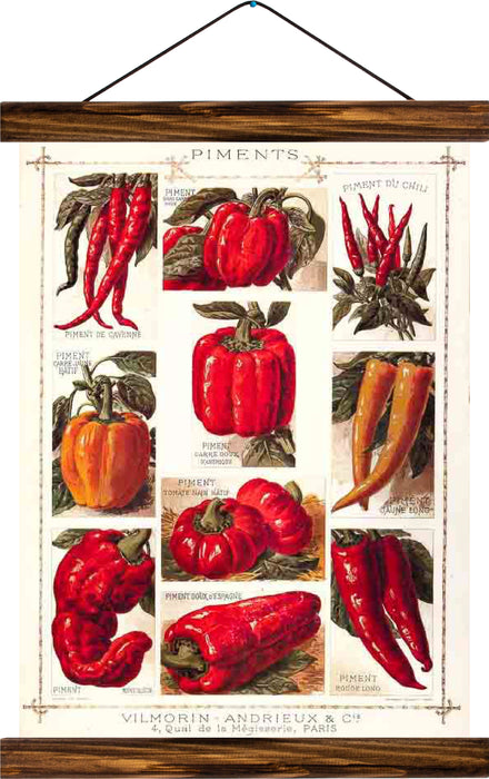Peppers, reprint on linen - Josef und Josefine