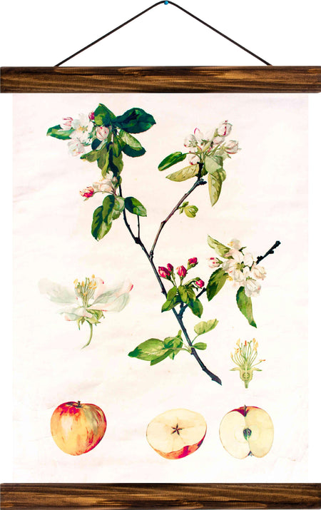 Apple tree blossom, reprint on linen - Josef und Josefine