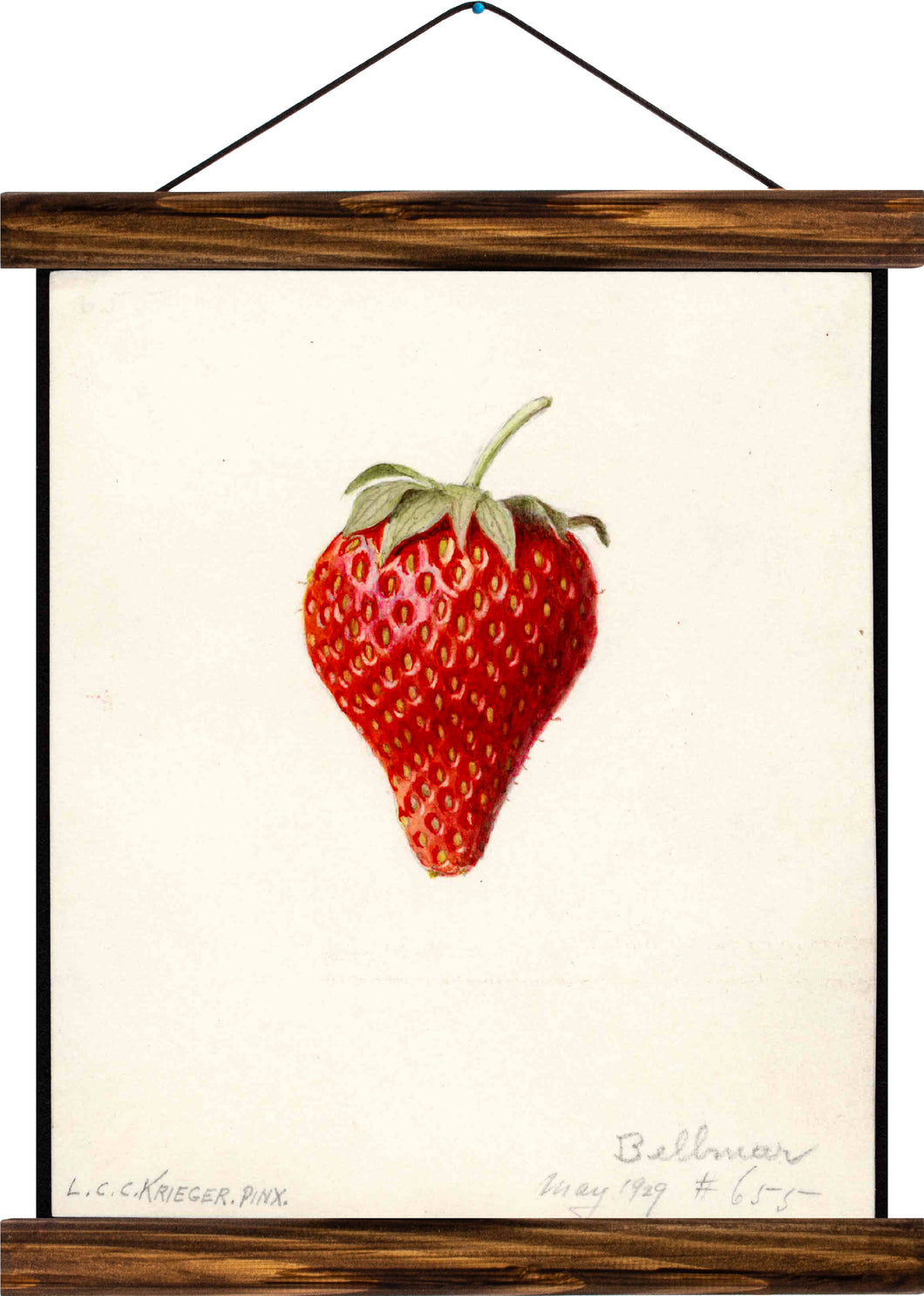Strawberry, reprint on linen