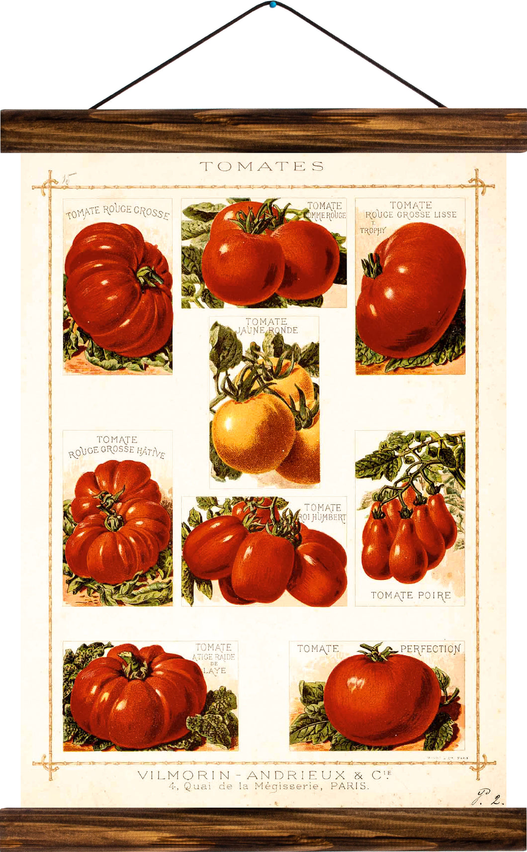 Tomatoes, reprint on linen