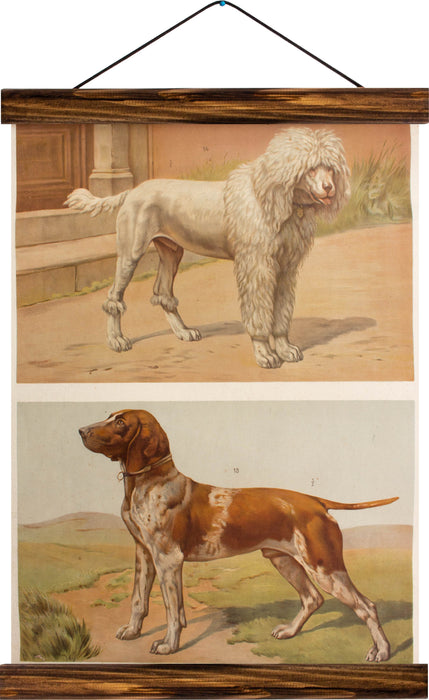 Dogs, reprint on linen