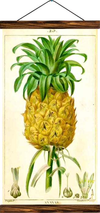 Pineapple, reprint on linen