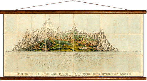Organized nature, extending over the earth, reprint on linen