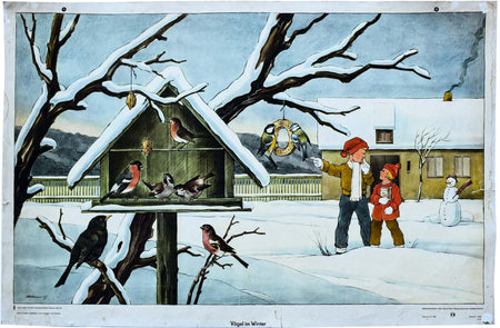 Birds in Winter, Vintage Wall Chart, 1960 - Josef und Josefine