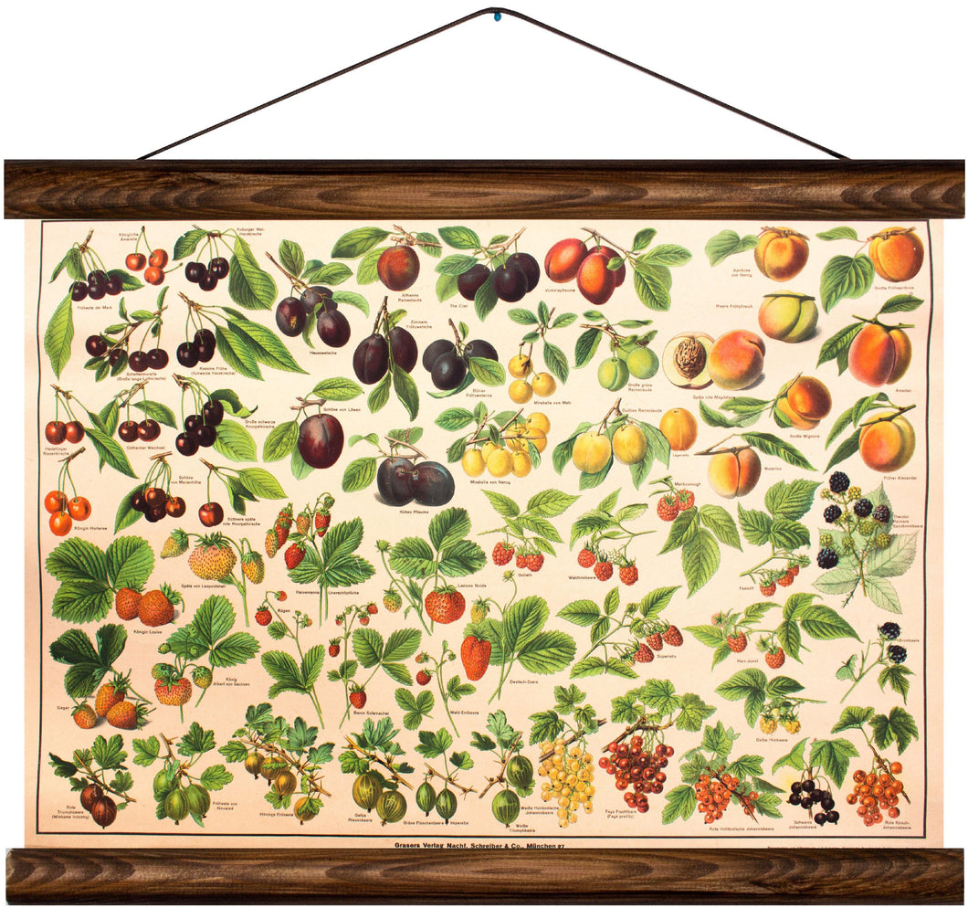 Different types of fruit, reprint on linen