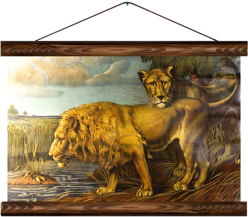 Lions, reprint on linen - Josef und Josefine