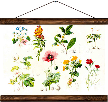 Different types of flowers, reprint on linen - Josef und Josefine