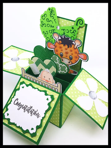 New Baby/Baby Shower Box Card - Green