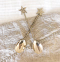 gold brass star spoon